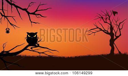 Halloween Cat Background