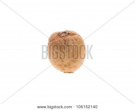 Rotten kiwi fruit.