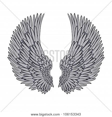 vector pair of angel wings isolated on white