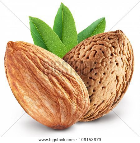 Almond nuts with leaves. File contains clipping paths.