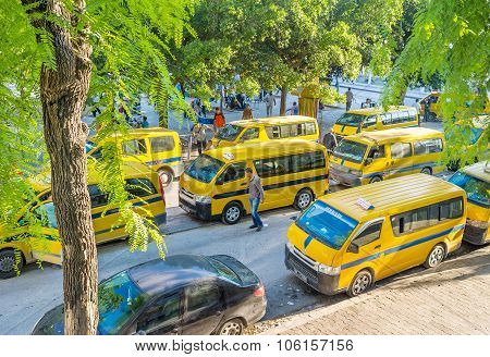 The Taxi Buses