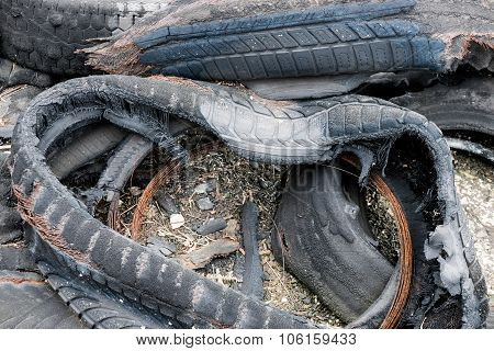 Burned Tyres