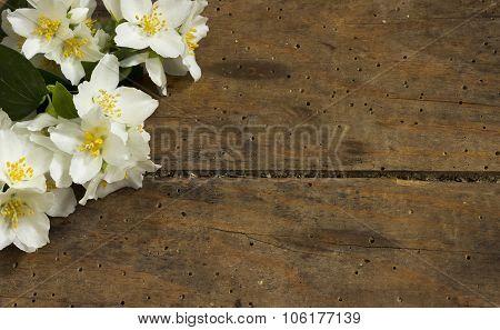 Flower In Wooden Background