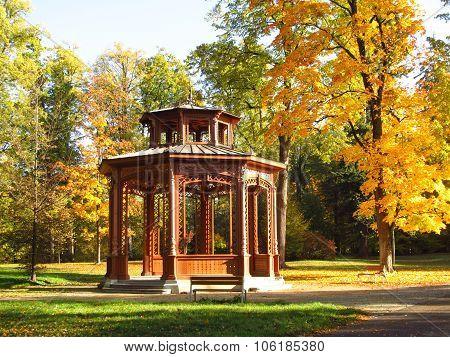 arbour in the park in autumn