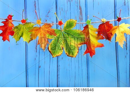 Autumn Leaves Hanging On A Rope Against Blue Wooden Background