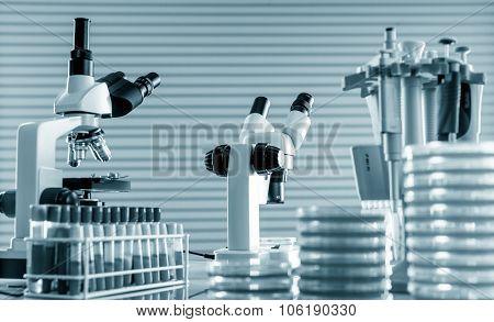 microscope and petri dishes in scientific lab .medical glassware