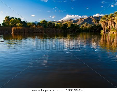 Lake and palm and mountains on horizont