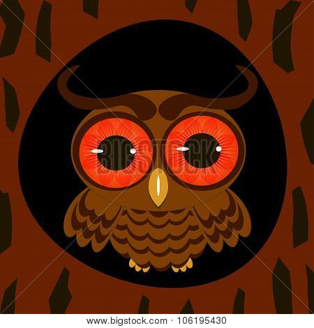 Owl In The Hollow Night