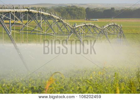 Farm Pivot Irrigation System Waters Crop