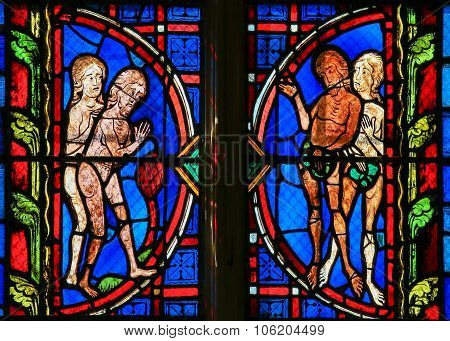 Adam And Eve - Stained Glass In Tours Cathedral