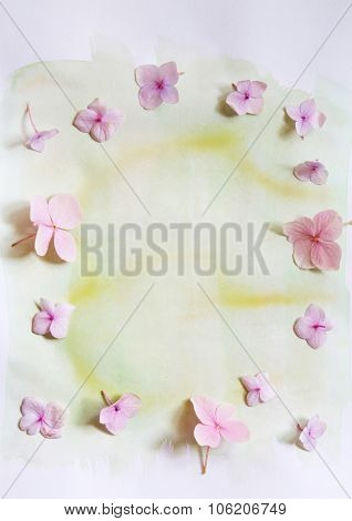 Subtle artistic floral background with hortensia flowers