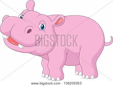 Cartoon baby hippo posing isolated on white background