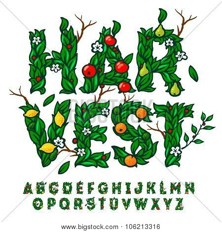Harvest festival alphabet made with leaves and fruits