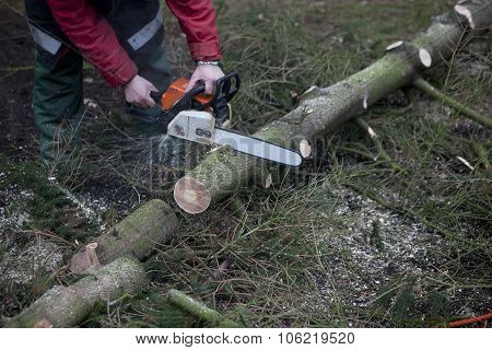 Working With Chainsaw