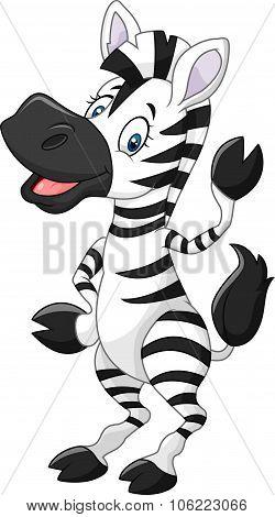Adorable cartoon zebra waving hand isolated on white background