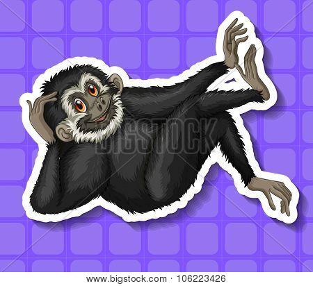 Black gibbon scratching his head illustration