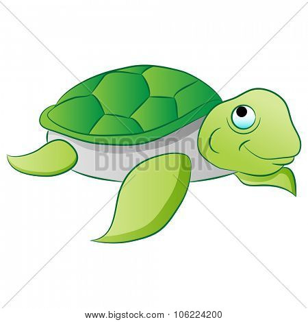 An image of a sea turtle.