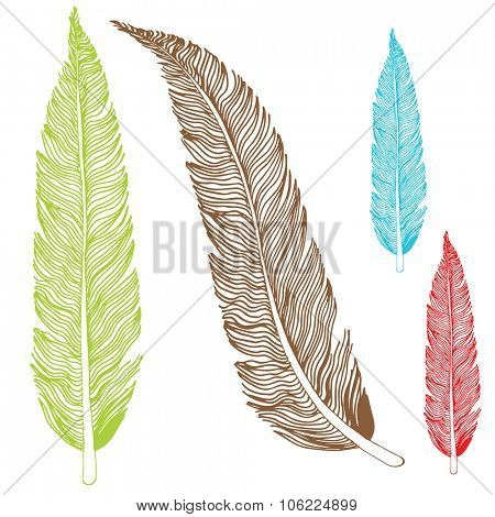 An image of a set of feather drawings.