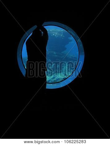 Man in marine window
