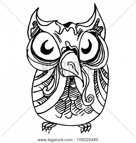 An image of a wise owl drawing.