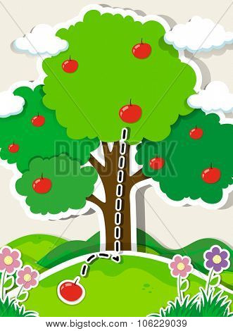 Apple falling from a tree illustration