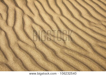 the texture of the sand in the desert