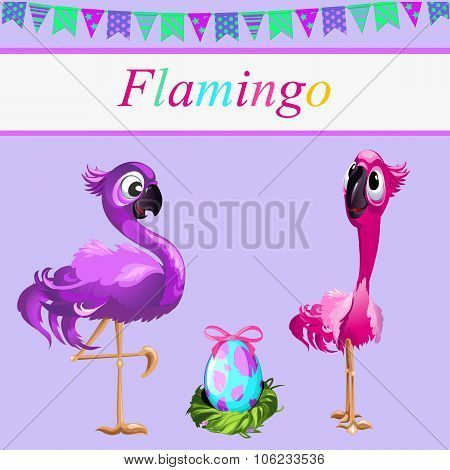 Love flamingos, parents and their egg