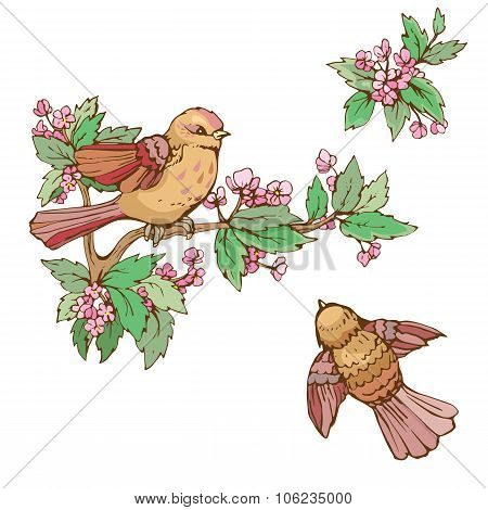 Set Of Colorful Birds And Blooming Summer Flowers, Isolated On White Background