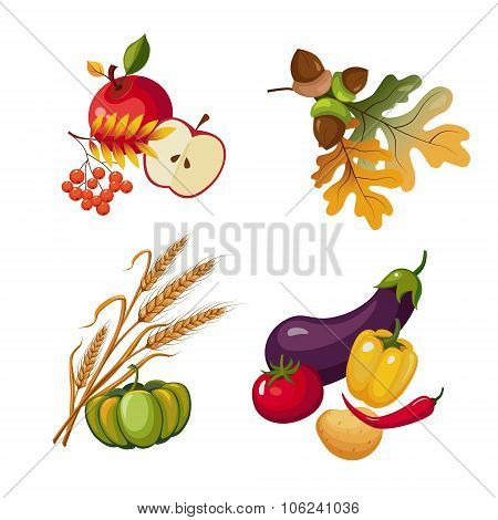 Vegetables and Fruits, Stalks, Autumn Leaves, Vector