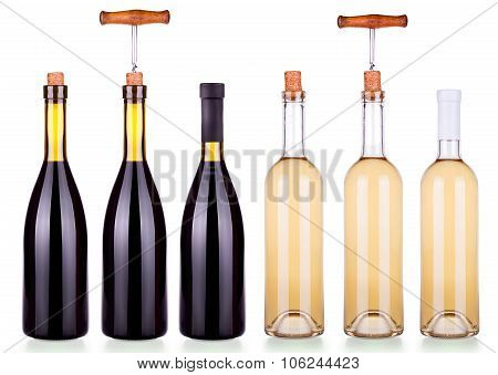 Set from red and white bottles of wine isolated