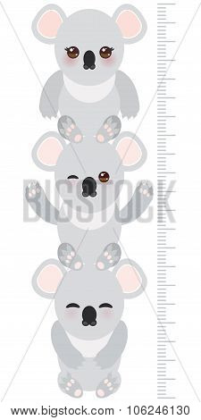 Koala. Children Height Meter Wall Sticker, Kids Measure, Growth Chart. Vector