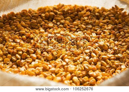 Dried Corn In A Bag