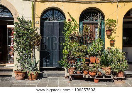 Street Sene In Lucca