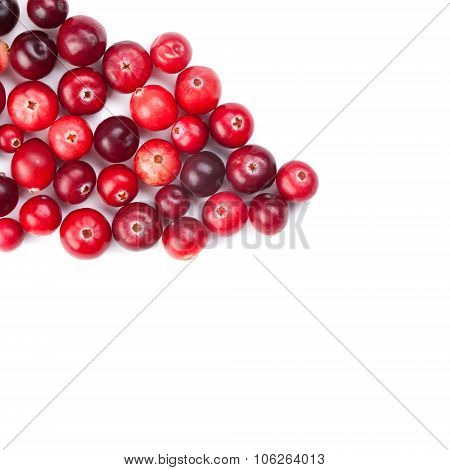 Red, ripe cranberries macro view.  white background