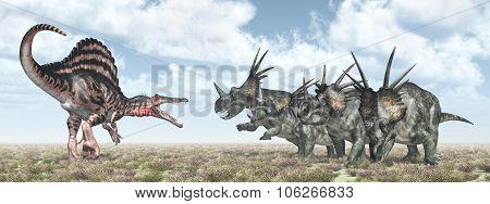 Spinosaurus attacks Styracosaurus