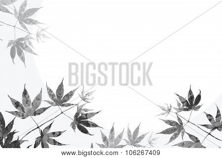 Maple Leaves And Floral Background, Sympathy Design
