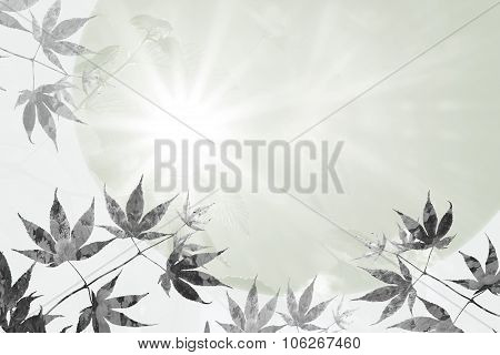 Maple Leaves And Rays Of Hope, Sympathy Background Design
