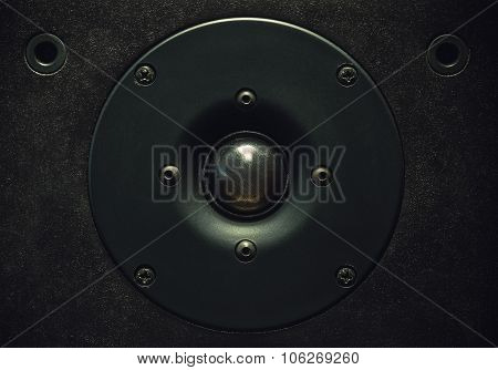 Tweeter Speaker Closeup