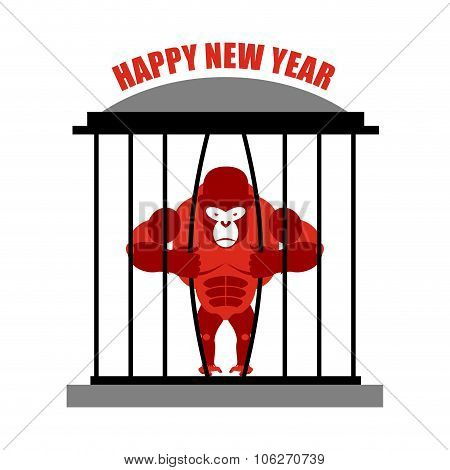 Gorilla Wants To Escape From Cage. Symbol Of New Year Red Monkey. Escape Wild Beast.