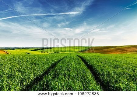 Vintage retro effect filtered hipster style image of Green fields of Moravia with blue sky, Czech Republic