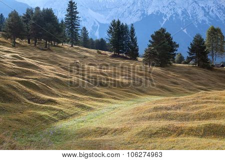 Green Hill In Bavarian Alps