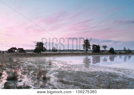 Beautiful Pink Sunrise On Swamp