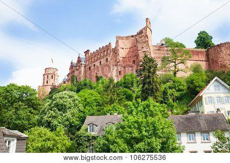 Schloss Heidelberg view on hill during daytime