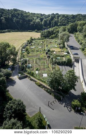 Vegetable Allotments In France
