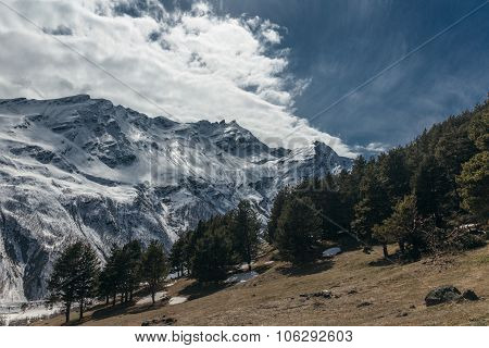 Mountains And Pine Trees At Elbrus Area.