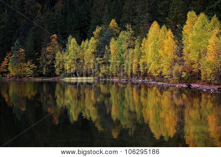 Autumn Landscape. On the Shore of a Lake in Autumn. Forest reflections on the calm surface of the Sa