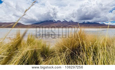Lagoon And Mountains In The Bolivian Altiplano