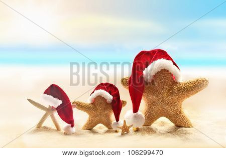 Starfish on summer beach and Santa hat