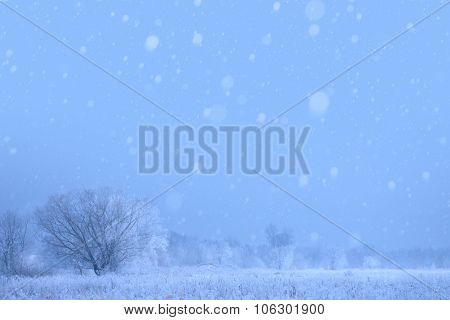 Art Christmas Winter Background; Snowy Landscape
