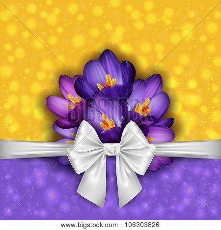 Purple Crocus Flowers With Bow